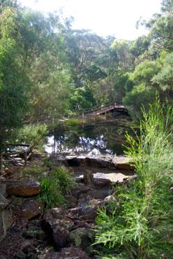 The lake at Ballarat Bird World